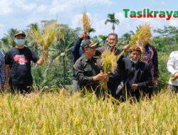 Produktifitas Petani Naik Efek Ziotas, Asep Sopari Apresiasi Karya Petani Lokal